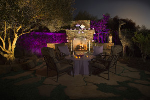 fx-luminaire-zdc-landscape-lighting-system-purple